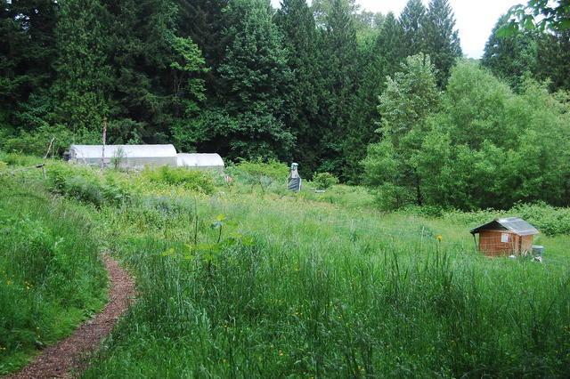 Farm Tour 09 - South Meadow View