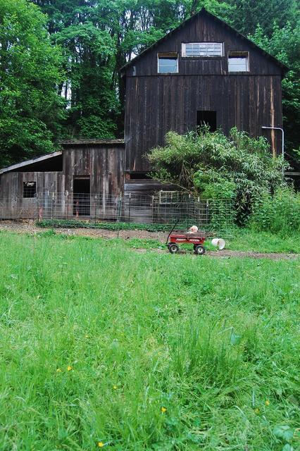 Farm Tour 12 - Barn View