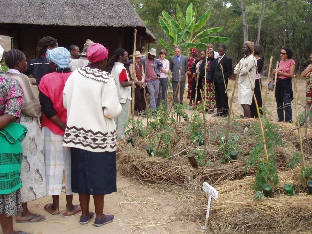 Global allies: Kufunda tour