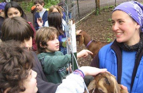 alycia.goats.kids.jpg
