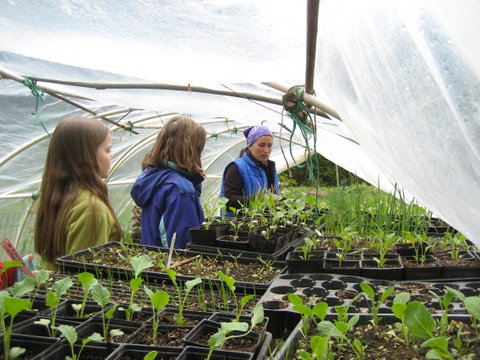 Kids in Greenhouse with Education Intern Alycia Bouyanan